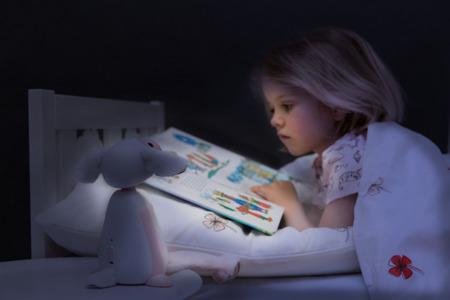 Lampka do czytania FIN z automatycznym wyłączaniem szara ZAZU