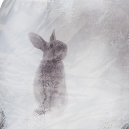 Lodger Skier Botanimal Kombinezon zimowy dla niemowlaka Mist Forest 3-6 m-cy